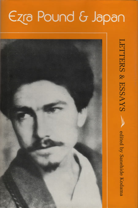 essays by ezra pound Ezra pound was born in 1885 in hailey, idaho he was a only child of homer loomis pound and isabel weston while pound was in his teens, he was forced to move for his.
